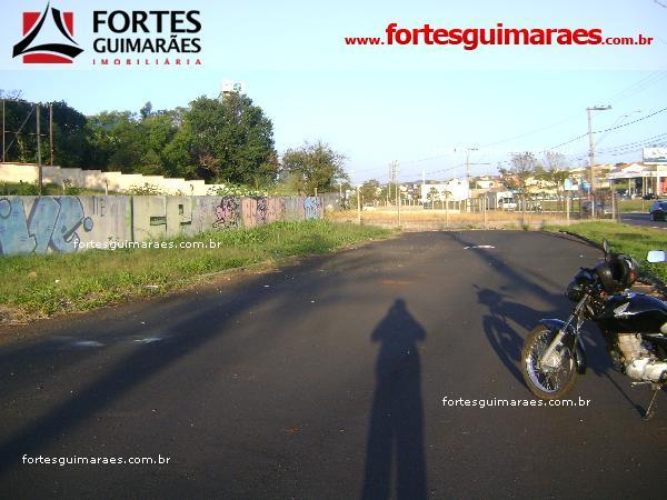 Alugar Terrenos / Terreno em Ribeirão Preto apenas R$ 10.000,00 - Foto 9