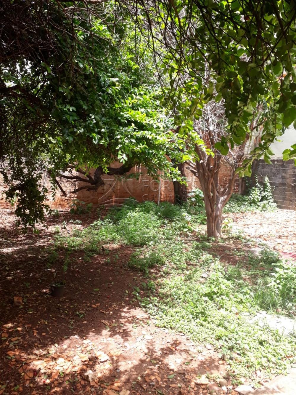 Alugar Casas / Padrão em Ribeirão Preto apenas R$ 850,00 - Foto 22