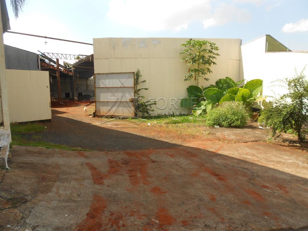 Alugar Comercial / Salão em Bonfim Paulista apenas R$ 12.500,00 - Foto 29