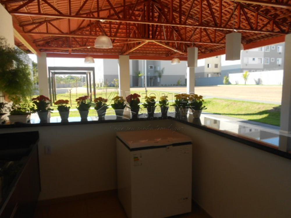 Alugar Apartamentos / Padrão em Ribeirao Preto apenas R$ 650,00 - Foto 32