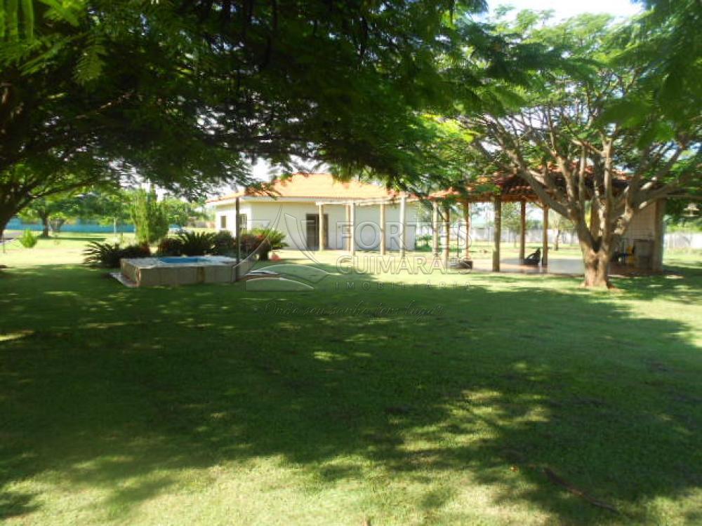 Alugar Casas / Condomínio em Jardinópolis apenas R$ 3.000,00 - Foto 86