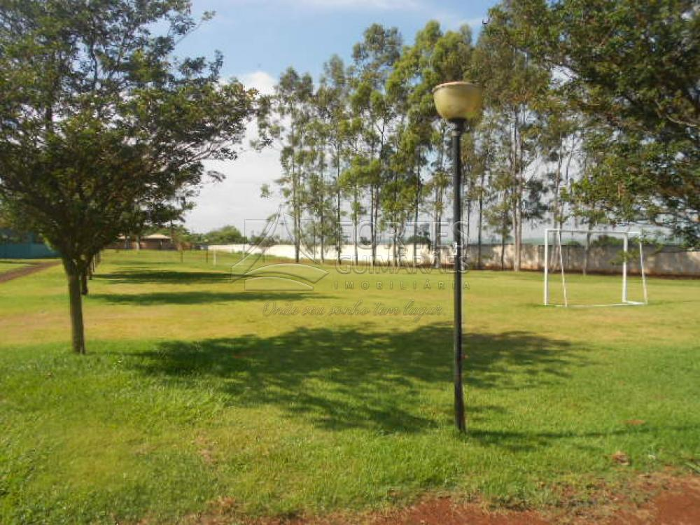 Alugar Casas / Condomínio em Jardinópolis apenas R$ 3.000,00 - Foto 92