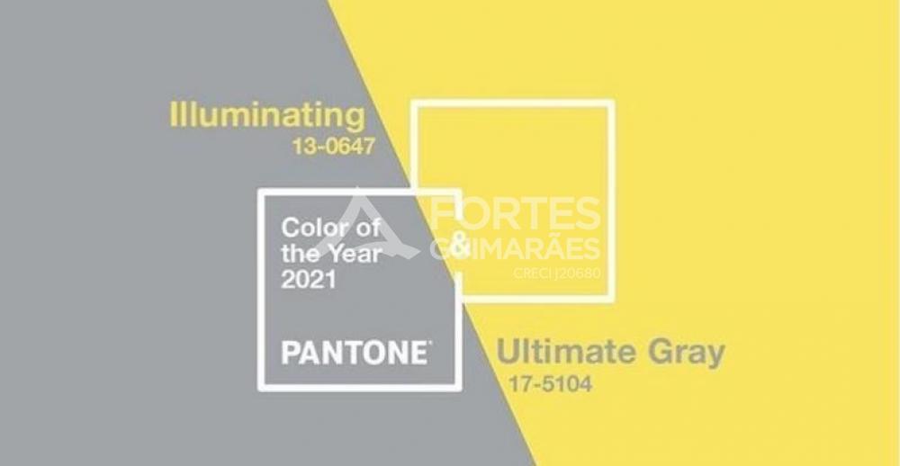 Quer saber quais são as cores para 2021?