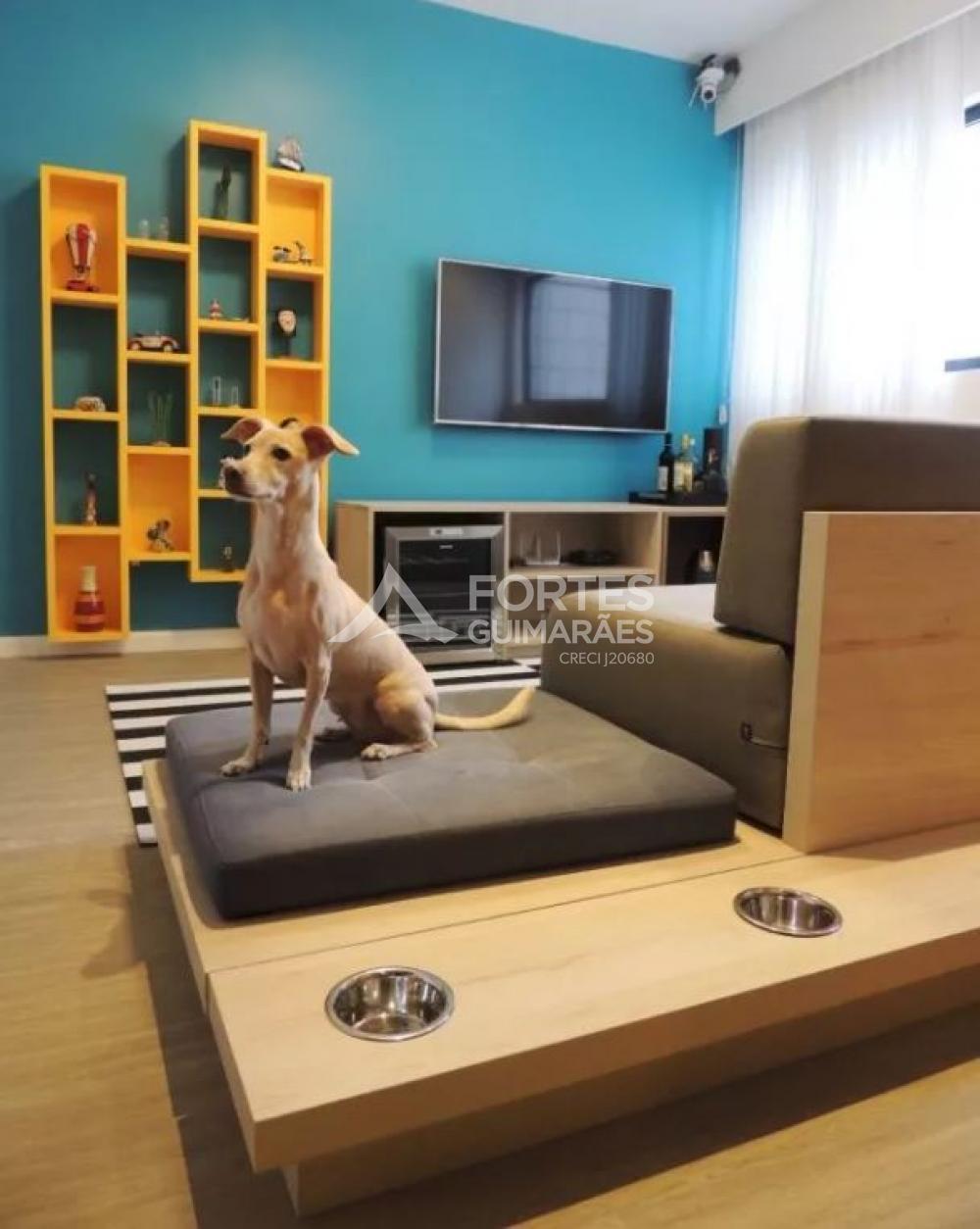 Cuidados com animais de estimação ao decorar o apartamento