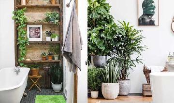 Inspiração: Veja dicas para usar plantas e flores no banheiro.