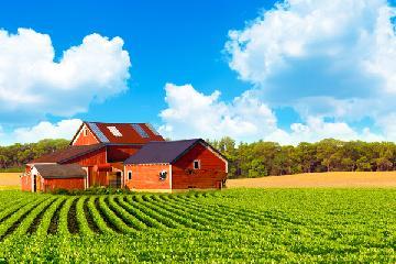 Sítio, chácara e fazenda: entenda as diferenças.