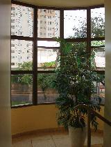 Alugar Comercial / Sala em Ribeirão Preto apenas R$ 550,00 - Foto 19